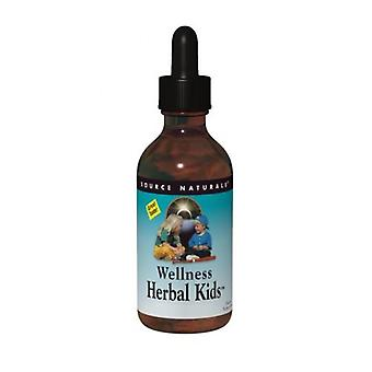 Kilde Naturals Wellness Herbal Kids Væske, 8 ounce