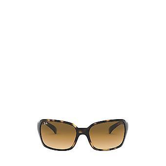 Ray-Ban RB4068 óculos de sol femininos de Havana light havana