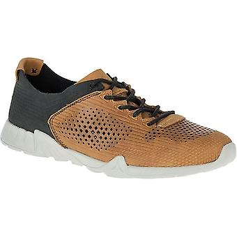 أحذية ميريل فيرسينت لتر Perf J91457 جلدية للرجال العالمي