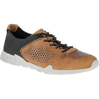 Sapatos Merrell Versent Ltr Perf couro J91457 universal