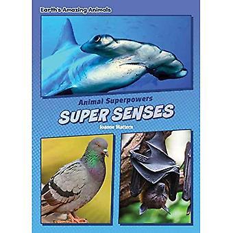 Super Senses (Core Content Science -- Animal Superpowers)