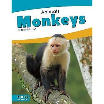 Animals - Monkeys by Animals - Monkeys - 9781635179538 Book