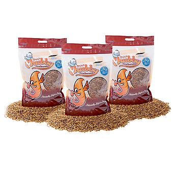 3kg dried chubby mealworms