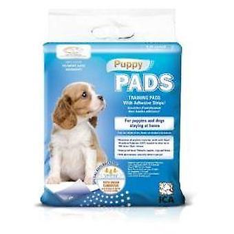 Ica Paños de Adiestramiento Hvalp Pads (Hunde, Grooming & Velvære, Bleer)