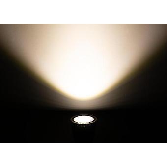 Full Spectrum Led Cob -valokeila - Phyto-lamppu