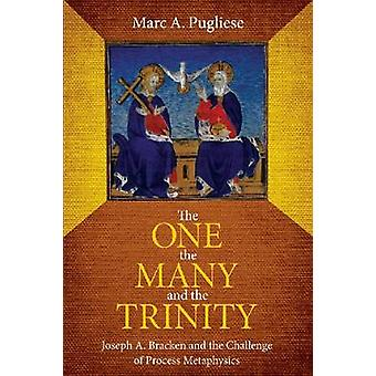 The One - the Many and the Trinity - Joseph A. Bracken and the Challen