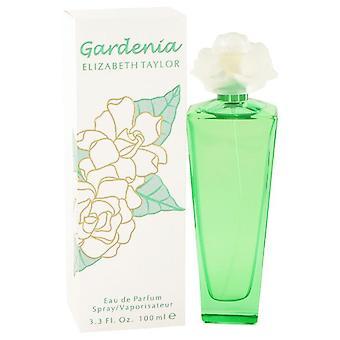 Gardênia Elizabeth Taylor Eau De Parfum Spray por Elizabeth Taylor 3,3 oz Eau De Parfum Spray