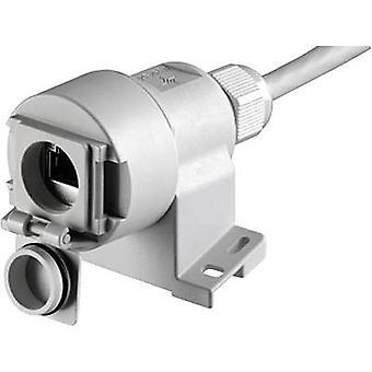 RJ 45 liittimeen vaihtoehto 6 pistorasia, suoraan nastojen määrä: 8P8C J00020A0436 kynttilä harmaa Telegärtner J00020A0436 1 PCs()