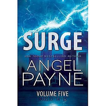 Surge: The Bolt Saga Volume 5