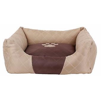 Arquivet rect-luokassa Bed De Luxe 61 Cm (koirat, vuodevaatteet, sängyt)