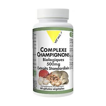 Mushroom Complex 500mg Standardized Extracts 60 vegetable capsules