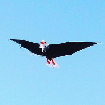 Fly Kite, 3d Kites