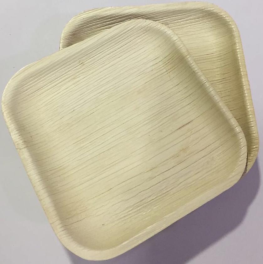 Piatti feste monouso eco-friendly - 22cm quadrato (25 piastre)