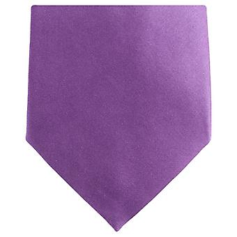 Gravata de poliéster Regular Neckwear Knightsbridge - roxo