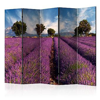 Vouwscherm - Lavender field in Provence, France [Room Dividers]