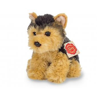 Hermann Teddy Knuffel Hond Yorkshire Terriër