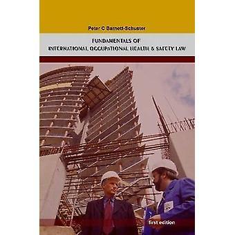 Grondbeginselen van het internationaal recht op gezondheid en veiligheid door BarnettSchuster & Peter