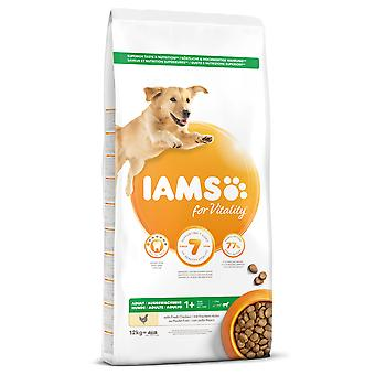 IAMS Adult Pro Active Large Breed Rich in Chicken (Dogs , Dog Food , Dry Food)
