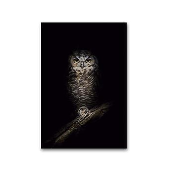 Wise Owl In The Night Poster -Image by Shutterstock