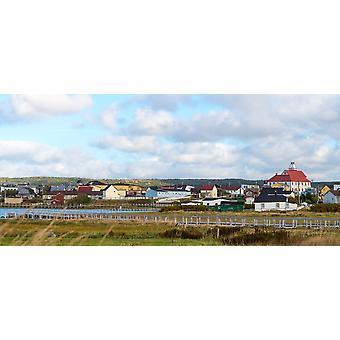 ボナヴィスタ ニューファンドランド ・ ラブラドール州カナダ ポスター印刷パノラマ画像 (30 x 14) でのカラフルな家