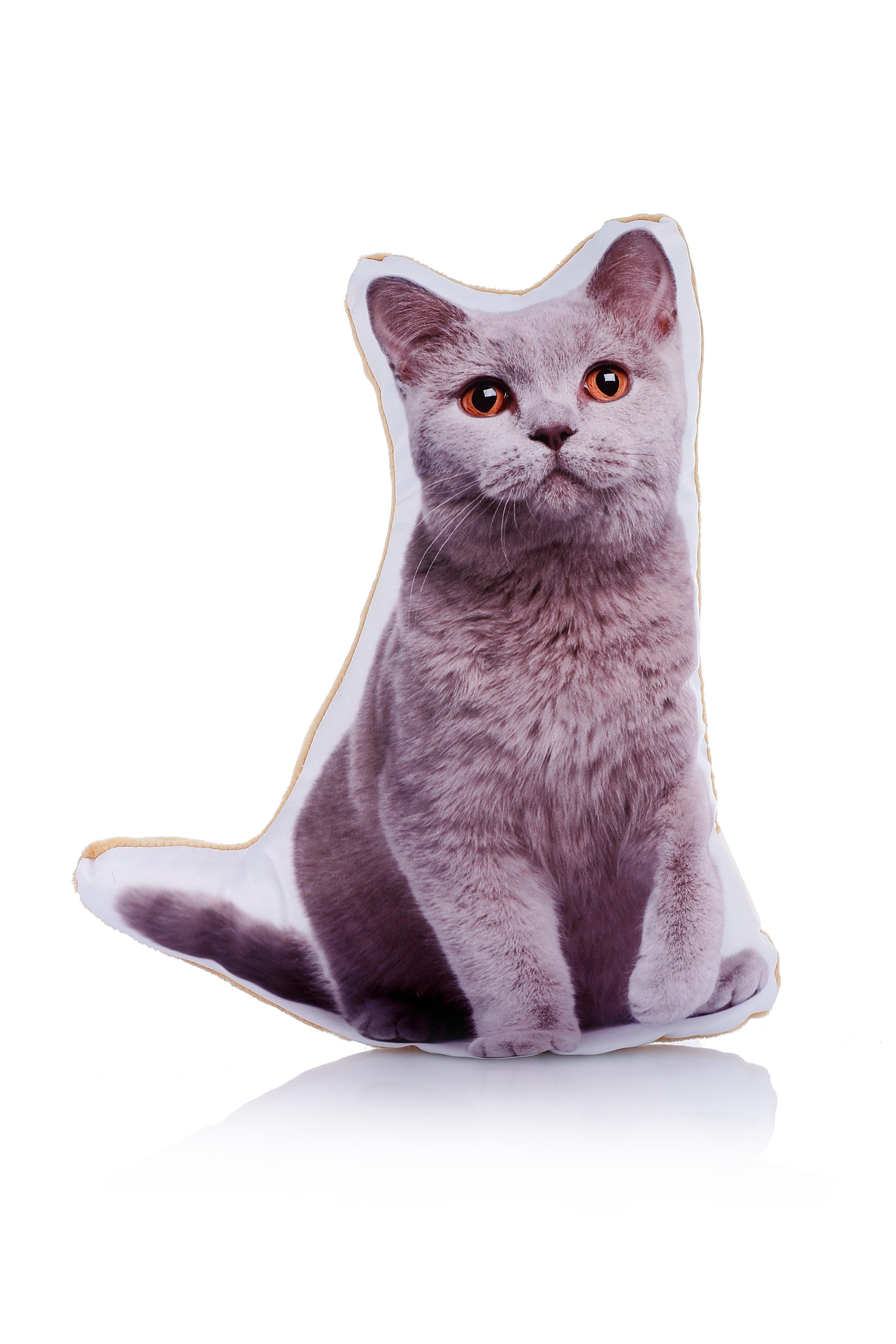 Adorable british blue cat shaped midi cushion