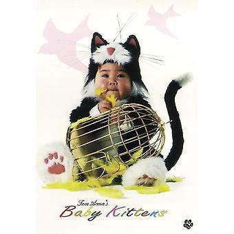 Tom Arma Baby Kittens Poster  Baby im Katzenkostüm