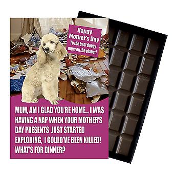 Pudel Właściciel Dog Lover Matka's Day Prezent Czekolada Prezent Dla Mama Nowość UK