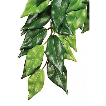 Exo Terra Terrarium jedwabne Fiscus roślin
