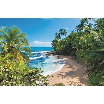 Villi Karibian ranta