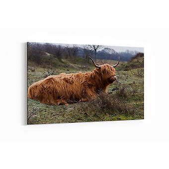 Malerei - Galloway Hirsch in freier Wildbahn - 100x70cm