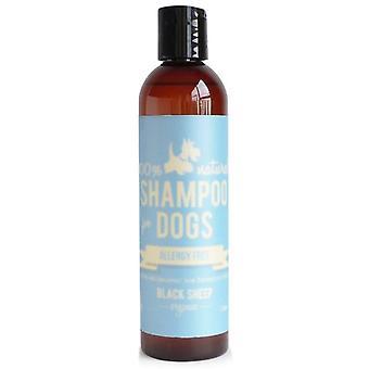 Allergiaton shampoo