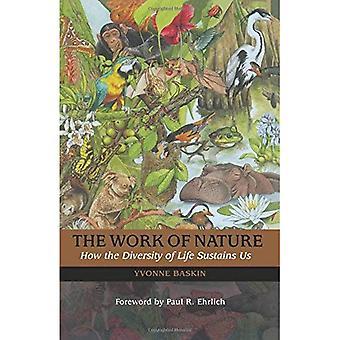 L'opera della natura: come ci sostiene la diversità della vita