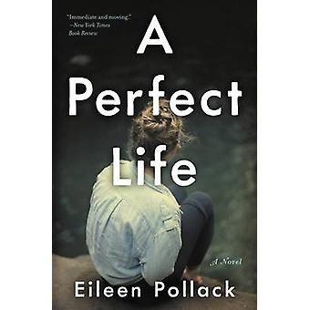 A Perfect Life by Eileen Pollack - 9780062419187 Book