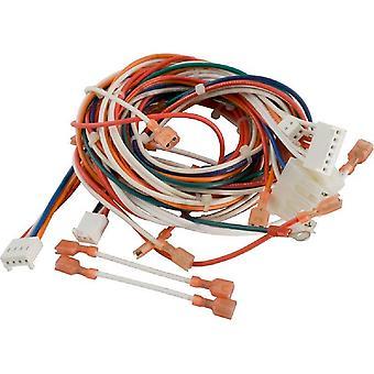 Hayward IDXWHA1931 drutu wykorzystać dla serii H nad ziemią basen