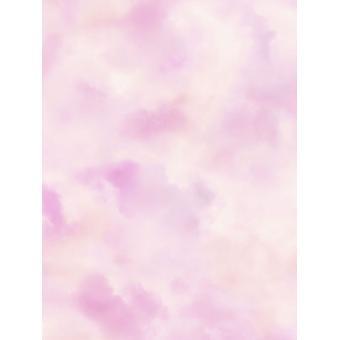 Fonds peint ciel nuageux Rose Rasch 818024