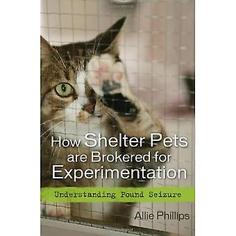 Jak jsou domácí zvířata Brokovaná na experimentování: princip zadržování liber