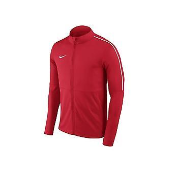 Nike JR Dry Park 18 Training AA2071657 training all year boy sweatshirts
