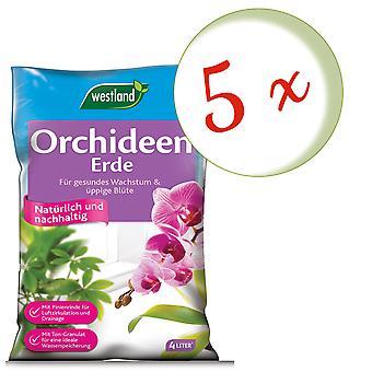 Sparset: 5 x WESTLAND® Orchideenerde, 4 Liter
