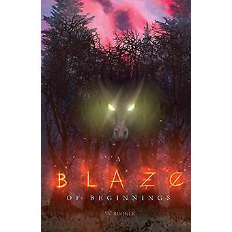 A Blaze of Beginnings by A K Rohner - 9781733384506 Book