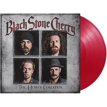 Black Stone Cherry - Human Condition [Vinyyli] Usa tuonti