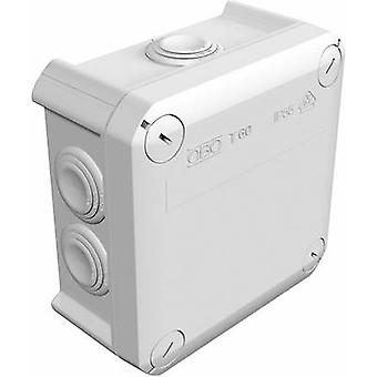 OBO Bettermann 2007061K Junction box (L x W x H) 114 x 114 x 57 mm Grey-white (RAL 7035) IP66 1 pc(s)