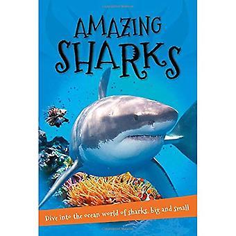 Amazing haaien: Alles wat u wilt weten over deze wezens van de zee in een verbazend boek (It's All about)