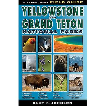 Den Field guiden to Yellowstone och Grand Teton National Parks