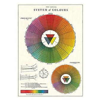 Cavallini Colour Wheel Wrapping Paper Poster