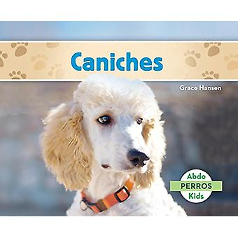 Caniches (Poodles ) by Grace Hansen - 9781624027031 Book