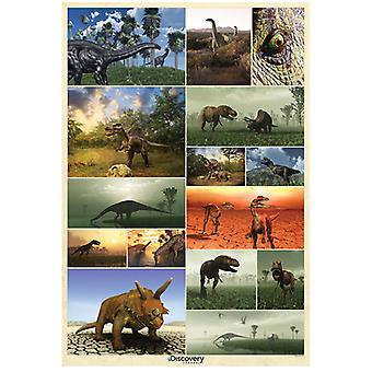 Discovery Channel Dinosaur Wall Mural 232cm x 158cm