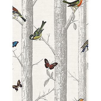 Aves Epping em galhos papel de parede branco Holden 12231