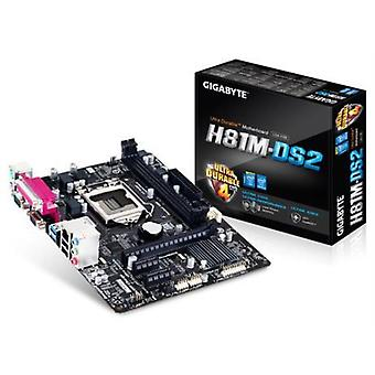 Placa base GA-H81M-DS2 mATX