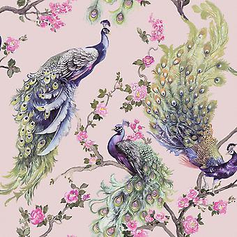 Menali Peacock Wallpaper Pink Holden 35923 Menali Peacock Wallpaper Pink Holden 35923