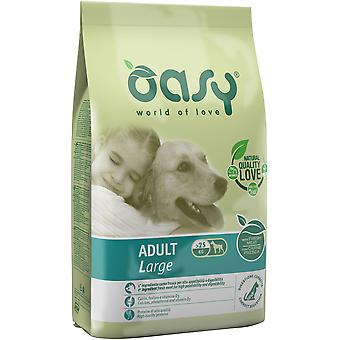 Oasy Adult Large Chicken (Dogs , Dog Food , Dry Food)